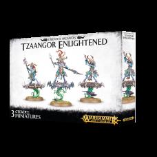 Chaos Daemons: Tzeentch Arcanites Tzaangor Enlightened